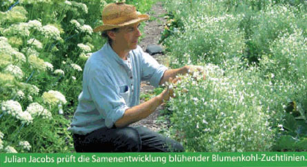 Entwicklung in der Landwirtschaft